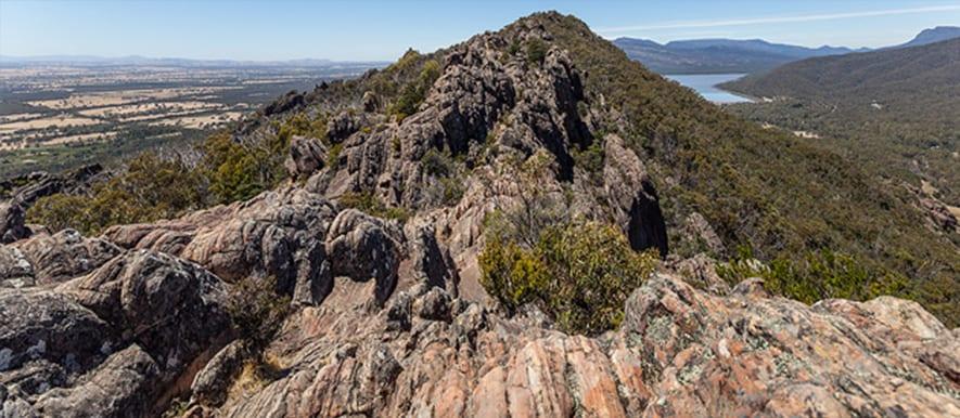 boronia-peak
