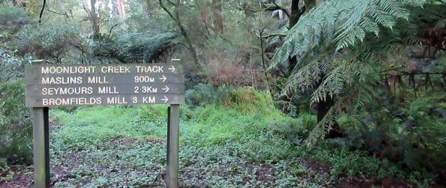trail-hiking-mount-worth-1