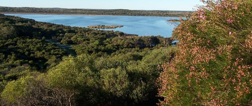 Lake Pollard Walk Trail