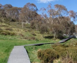Thredbo-to-Village-Weir-return