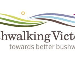 trail-hiking-bushwalking-victoria-855