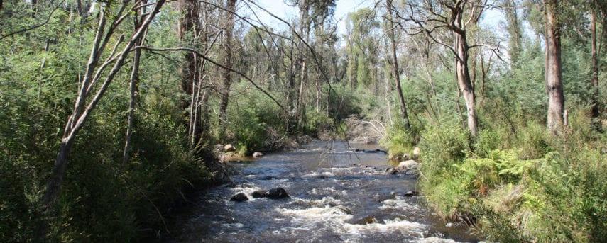 homeinvisagepublic_htmltrailhikingwp-contentuploads201606trail-hiking-murrindindi-river.jpg