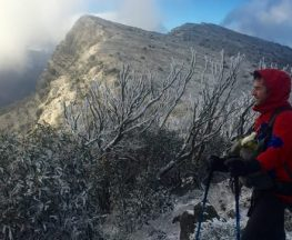 trail-hiking-The-Bluff-via-Link-Track