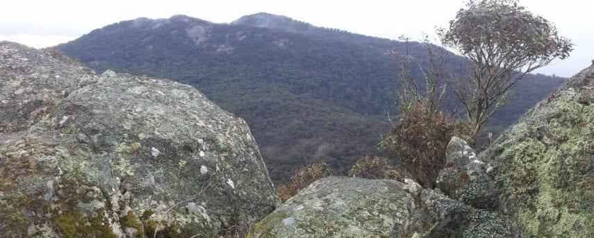 homeinvisagepublic_htmltrailhikingwp-contentuploads201607trail-hiking-mount-gorrin-8km.jpg