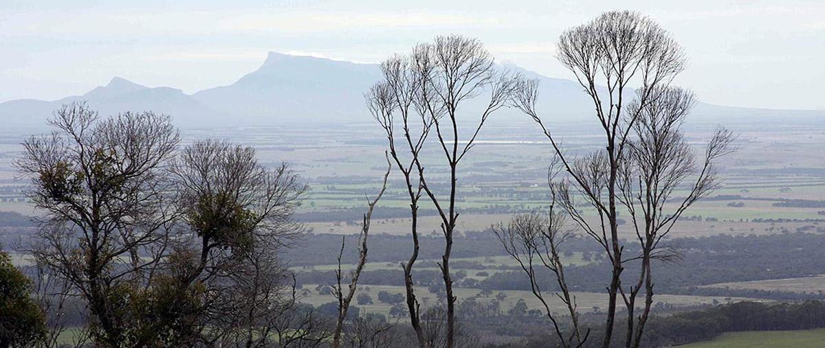 Nancys Peak