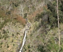 homeinvisagepublic_htmltrailhikingwp-contentuploads201608trail-hiking-strath-creek-and-tunnel-falls.jpg