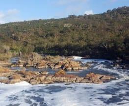 Syd's Rapids & Aboriginal Heritage Trail (6.4km)