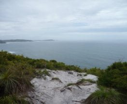 Awabakal Viewpoint Walk
