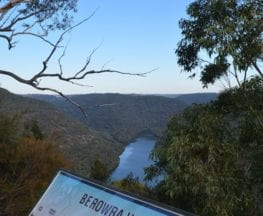 Barnetts Lookout