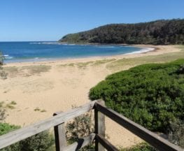 Bateau Bay Beach loop