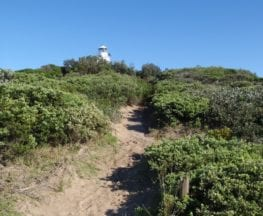 Botany Bay Discovery Centre to Cape Baily
