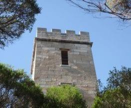 Boyd Tower