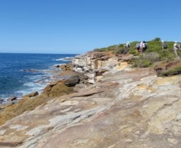 Bundeena to Jibbon Head Circuit