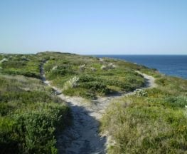 Cape Baily Coast Walk