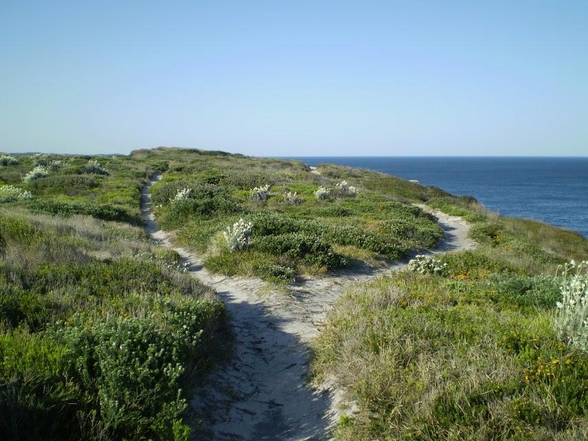 Cape Baily Coast Walk