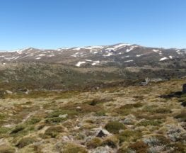 Charlotte Pass to Village Lookdown