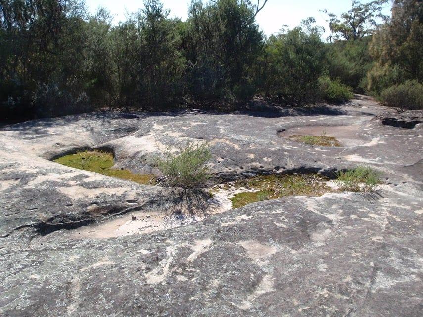 Cherrybrook to Refuge Rock