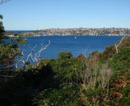 Chowder Bay to Middle Head return via Chowder Bay Rd
