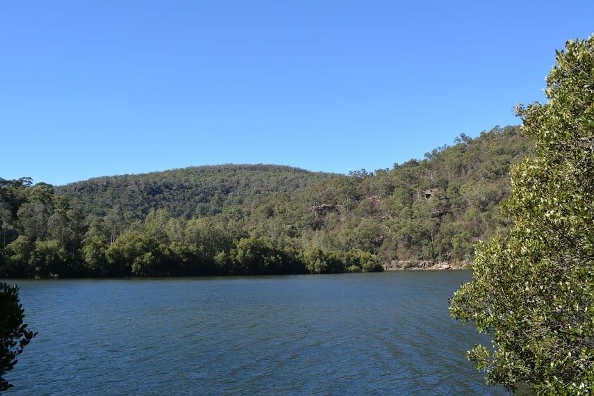 Crosslands to Berowra Creek Lookout