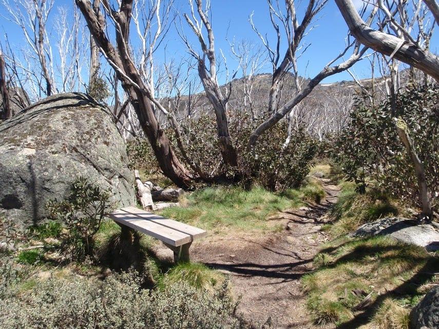 Dead Horse Gap and Thredbo River loop