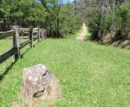 Dubbo Gully and Ten Mile Hollow Circuit (via Clares Bridge)