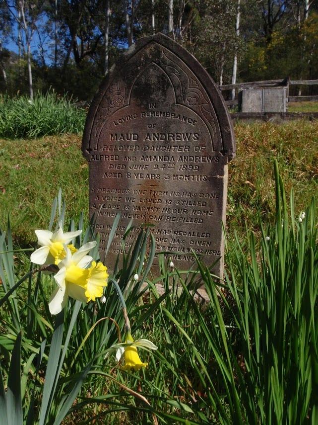Dubbo Gully to Upper Mangrove Cemetery