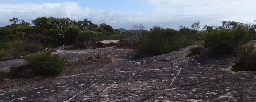 Elvina Bay Aboriginal Engraving Walk