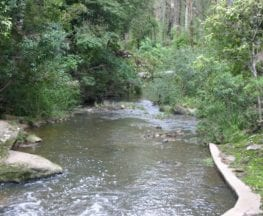 Epping to Pennant Hills Station (via Lane Cove River)