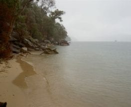 Flint and Steel Bay (to White Horse Beach)