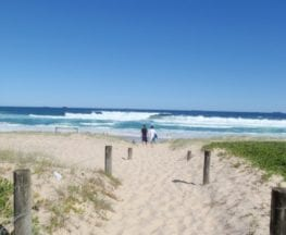 Freemans camping area to Birdie Beach
