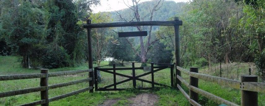Greta road to Cedar Brush track head