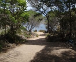 Hobart Beach camping area to Bournda Lagoon