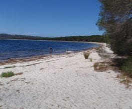 Hobart Beach loop