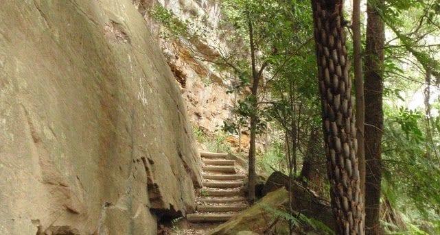 Katandra Reserve Explorer