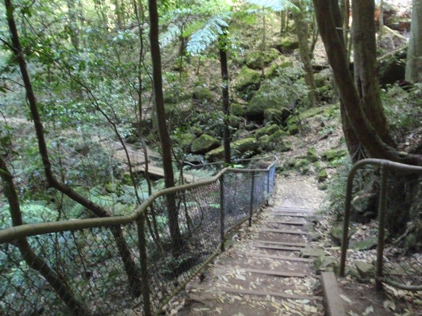 Katoomba Falls Circuit