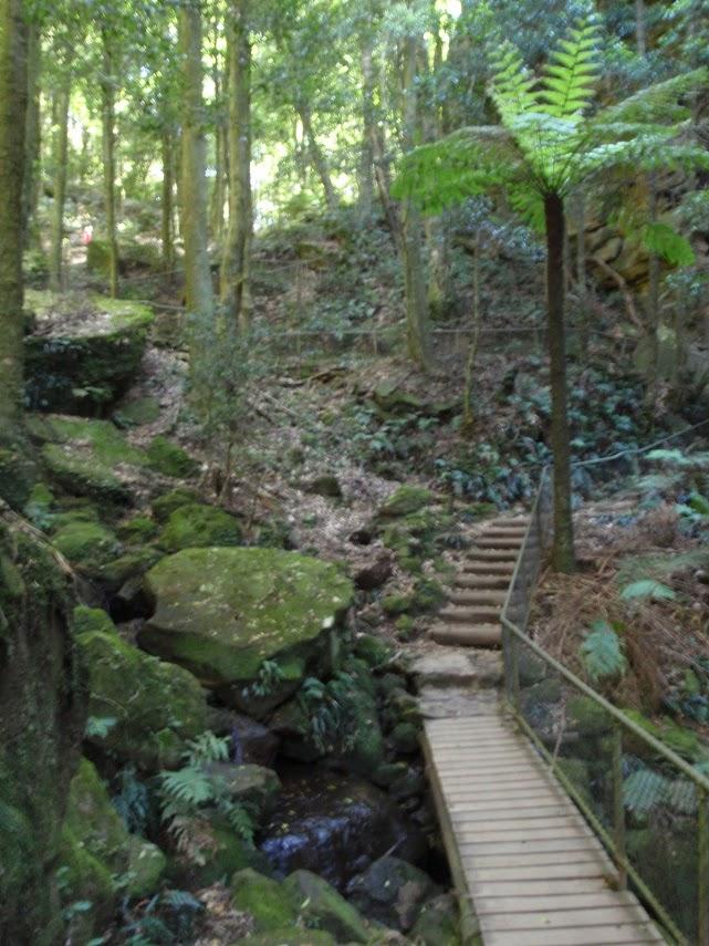 Katoomba Kiosk to Katoomba Falls