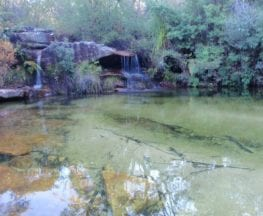 Lovetts Pools