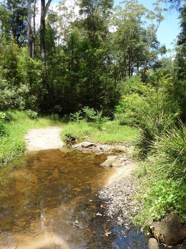 Macquarie Park to Thornleigh