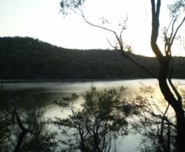 Manly Dam Circuit Walk