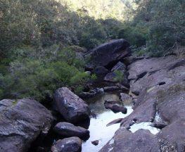 Martin's Lookout to Glenbrook Creek