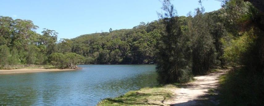 Middle Harbour Creek Loop