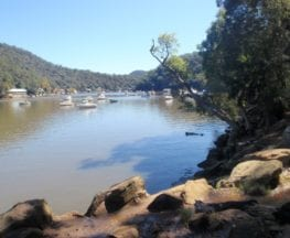 Mt Kuring-gai to Cowan (via Berowra Waters)