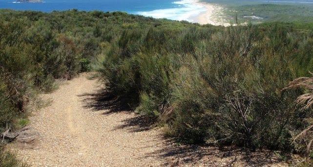 Munmorah Coast Track