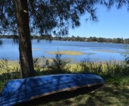 Narrabeen Lagoon Trail (from Middle Creek)