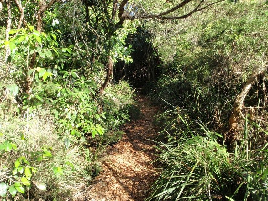 Norah Head Nature Trail