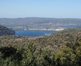 Patonga to Staples Lookout