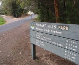 Pennant Hills Park loop (via Lane Cove River)