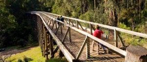 Rail-Trails