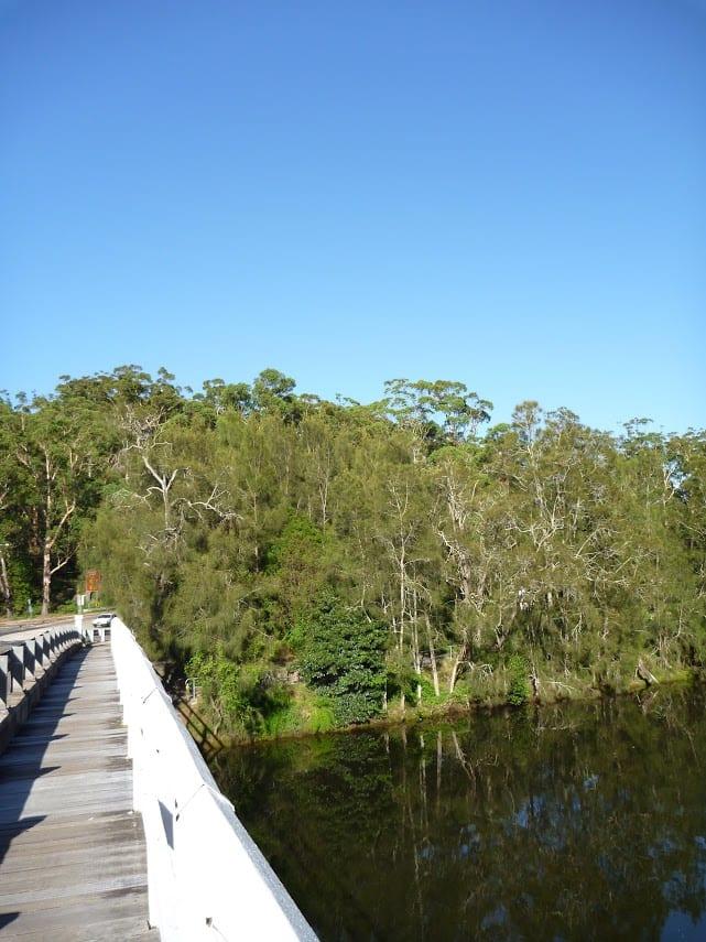 Roseville to Macquarie Park