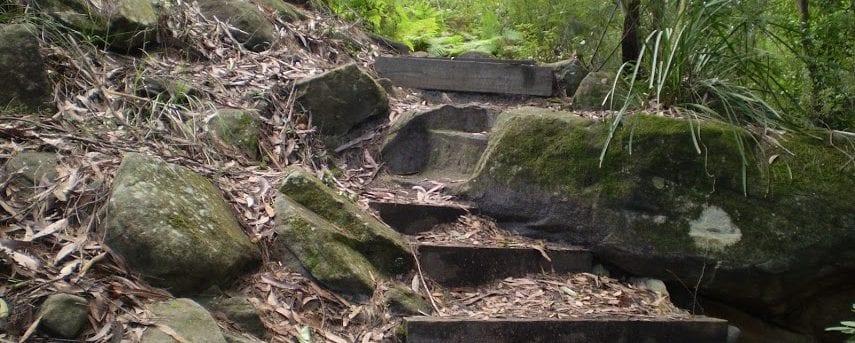 STEP Track
